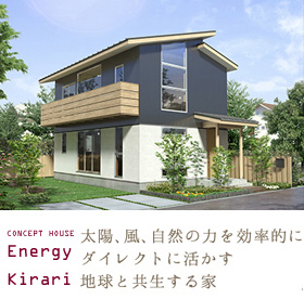 Energy vivi